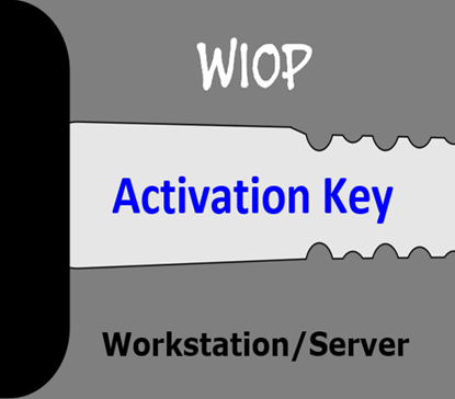 hIOmon WIOP Workstation/Server Activation Key