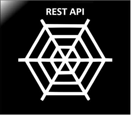Picture for category REST API